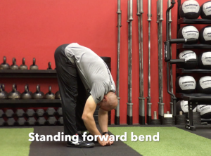 CrossFit CFD Stretch Standing Forward Bend