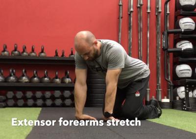 Extensor forearms stretch